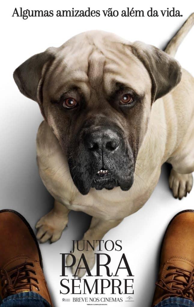 Universal Pictures divulga pôsteres e trailer do drama de Gail Mancuso, Juntos Para Sempre 4