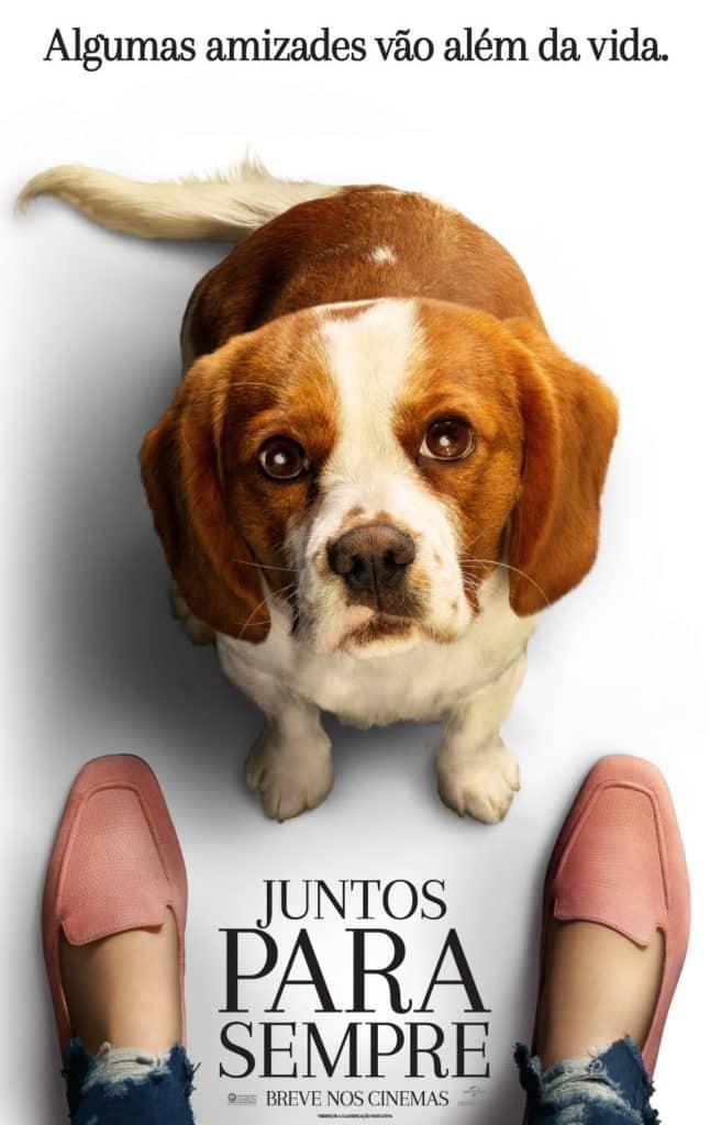 Universal Pictures divulga pôsteres e trailer do drama de Gail Mancuso, Juntos Para Sempre 2