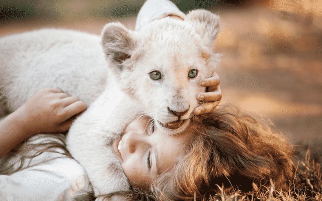 Envolto em polêmica, A Menina e o Leão ganha trailer nacionalizado