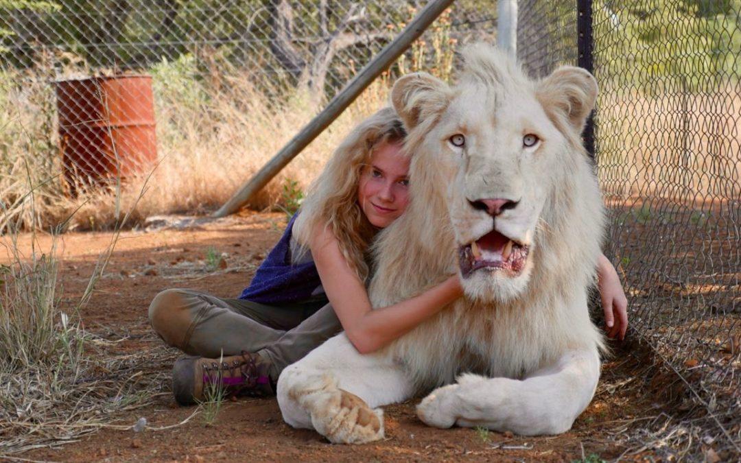 A Menina e o Leão | O Ultimato
